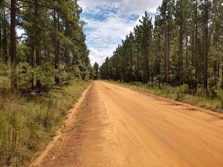 The Lakeway Tract  49.6+/- acres
